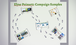 Copy of Elyse Poinsett: Campaign Samples