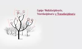 Equipo Multidisciplinario, Interdisciplinario e Intradiscipl