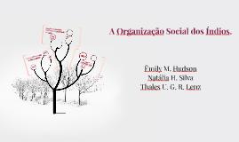 A Organização Social dos Índios.