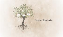 Pastor/in