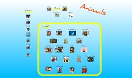 Animals-basic