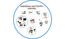 Amphibians & Reptiles overview
