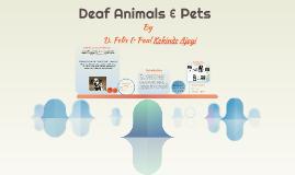 Deaf Animals & Pets