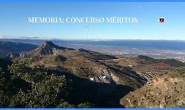 Copy of Copy of Copy of MEMORIA PUESTOS TRABAJO