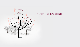 Nouns in English