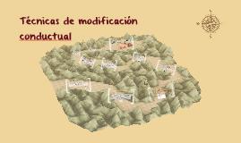 Técnicas de modificación conductual
