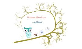 Copy of Copy of Sistema Nervioso Anfibios