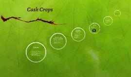 Cash Crops-