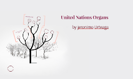 United Nations Organs