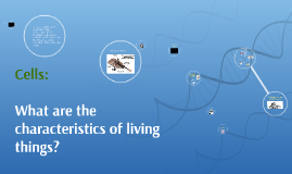 Cells: What are the characteristics of living things?