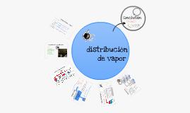 Distribución de Vapor