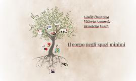 Il corpo negli spazi minimi : casa sull'albero