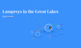 Lampreys in the Great Lakes