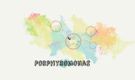Porphyromonas