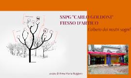 """S.S.P.G. """"Carlo Goldoni"""" Fiesso D'Artico"""