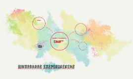 9. Rinkodaros eksperimentas
