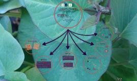 Caracterización biológica y serológica de