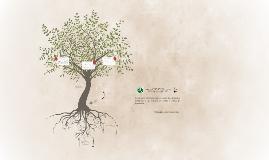 Estrategias utilizadas para trabajar la educación ambiental