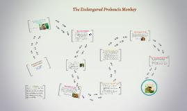 The Endangered Proboscis Monkey