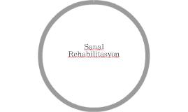 Sanal Rehabilitasyon