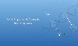 Nerve Impulses & Synaptic Transmissions