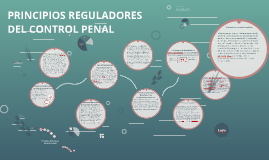 PRINCIPIOS REGULADORES DEL CONTROL PENAL