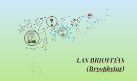 Copy of LAS BRIOFITAS
