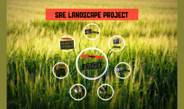 SAE Landscape project