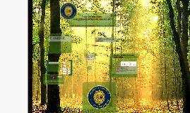 Copy of Ecology Outdoor Scavenger Hunt