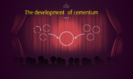 The development  of cementum