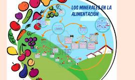 Copy of Copy of LOS MINERALES EN LA ALIMENTACIÓN