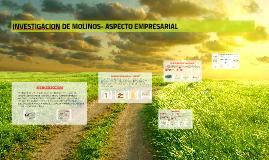INVESTIGACION DE MOLINOS- ASPECTO EMPRESARIAL