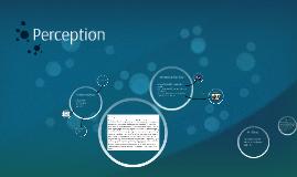 Perception Presentation