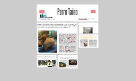 Perro Taíno