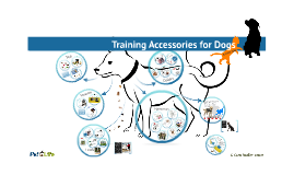 Dog Behavior: Products & Training Tools