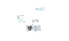 Digital Natives Projects Portfolio