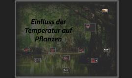 Einfluss der Temperatur auf Pflanzen
