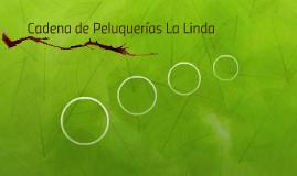 Cadena de Peluquerías La Linda