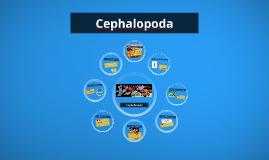 Cepholopoda