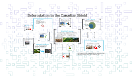 Deforestation in the Canadian Shield