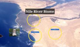Nile River Biome