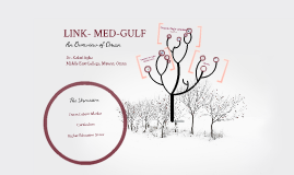 Copy of Med-Gulf
