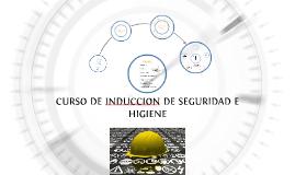 CURSO DE INDUCCION DE SEGURIDAD E HIGIENE