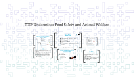 TTIP Undermines Food Safety and Animal Welfare