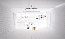 Integrated Multichannel Marketing Systems- Honolulu Cookie Company