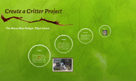 Create a Critter Project