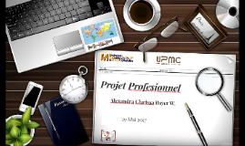 Projet Profesionnel