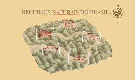 RECURSOS NATURAIS DO BRASIL