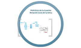 Copy of Hidrólisis de la caseína