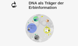 DNA als Träger der Erbinformation